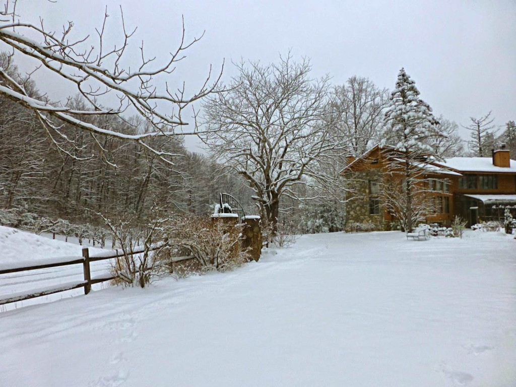 Snowy landscape with trees and a large lodge style building in the background