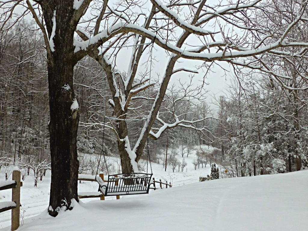 Wrought iron swing suspended from a tree looking towards the woods and a snowy landscape