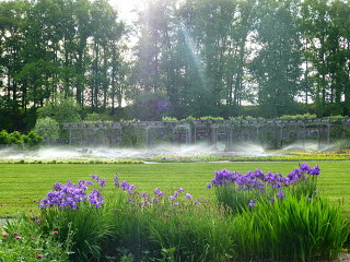 Arbor and garden plants being watered by sprinklers with lawn and purple flowers in the foreground