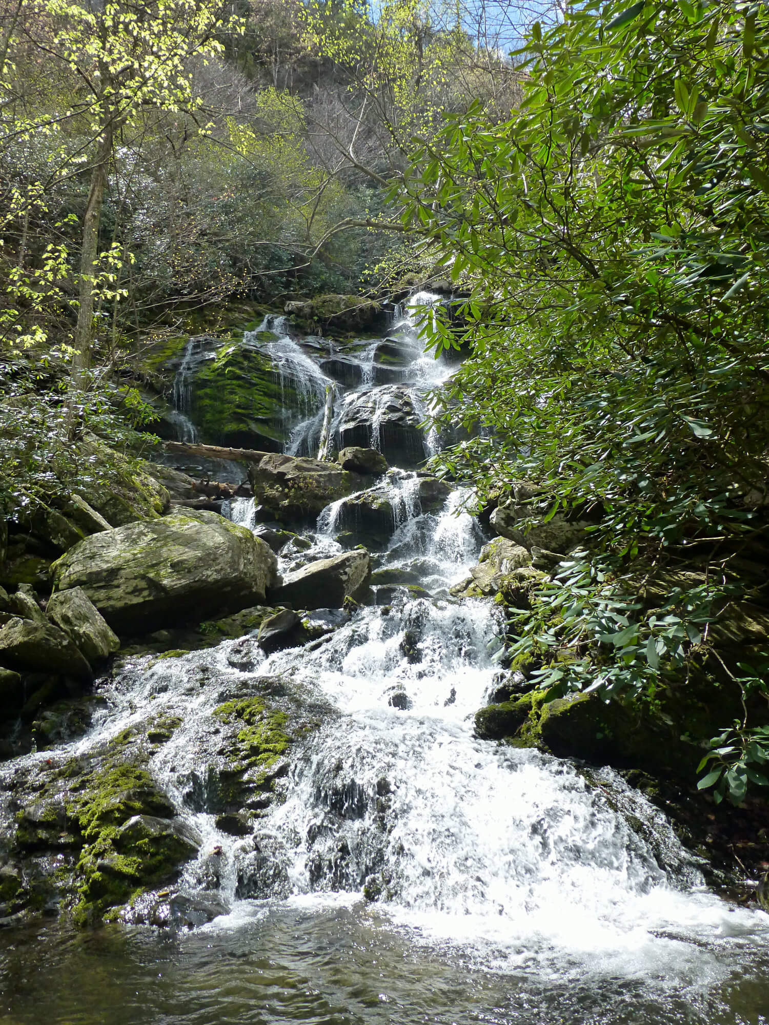 Large waterfall with water cascading down several boulders with trees around it that are just getting their leaves