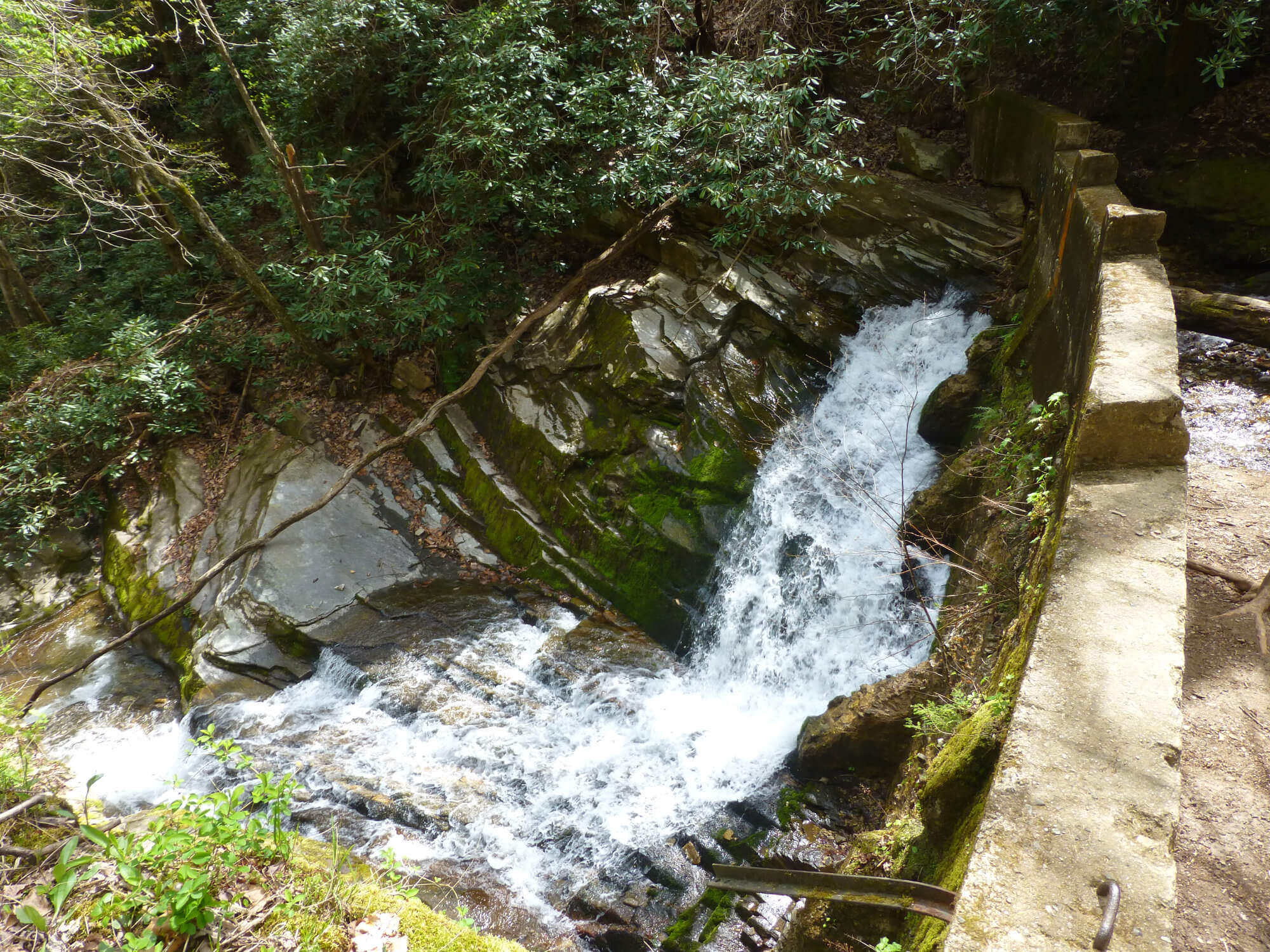 Water gushing through the ruins of an old dam covered in moss in the forest