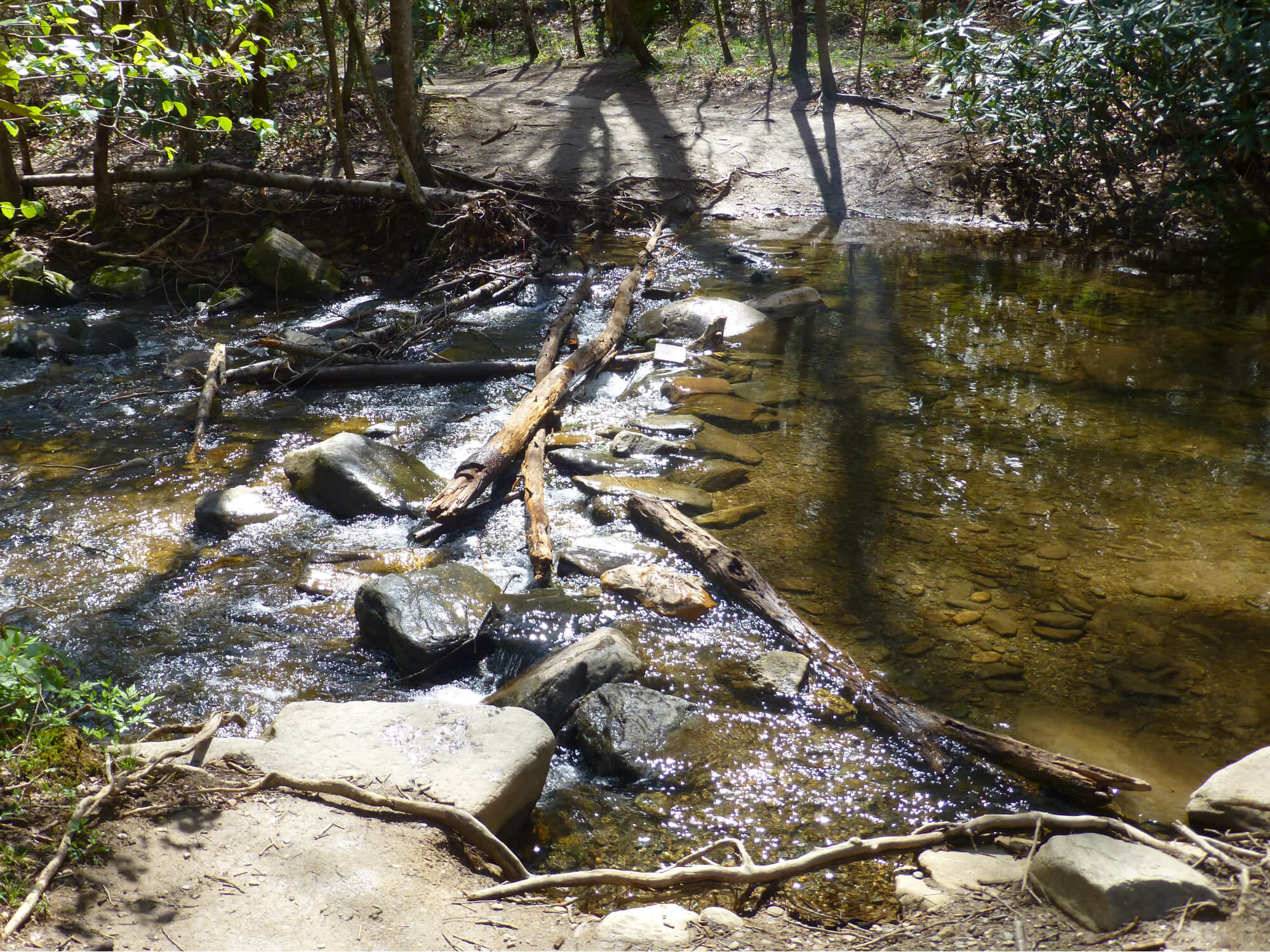 Stream with rocks and logs creating a place to cross