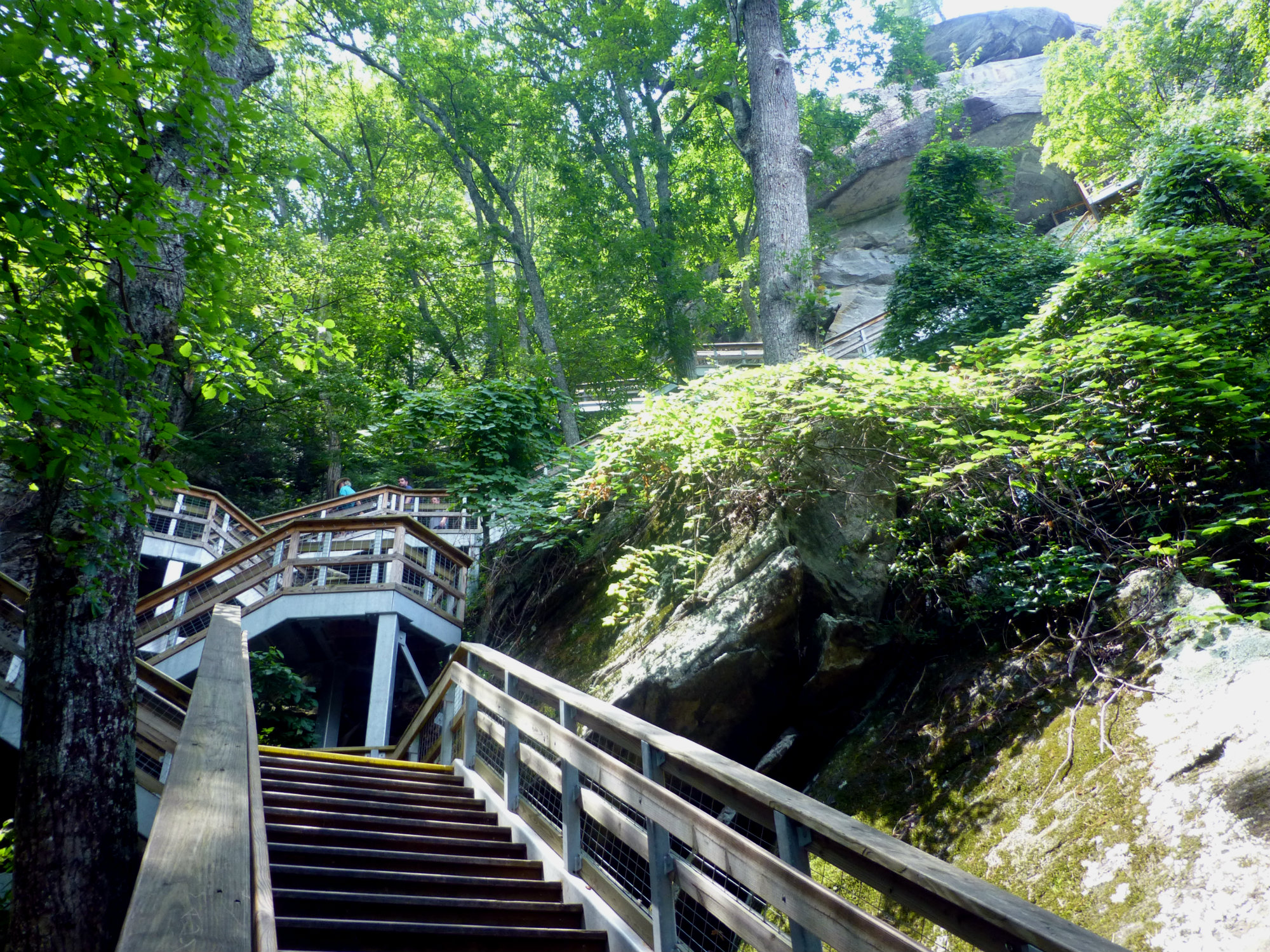 Set of well-constructed wooden steps leading through trees to the top of a granite rock tower
