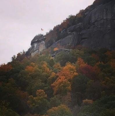 Trees with fall color and large granite stone with American flag on top