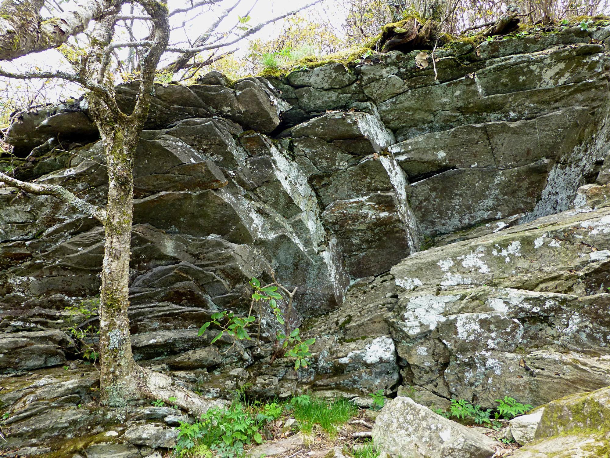 Craggy Gardens Rocks 050916