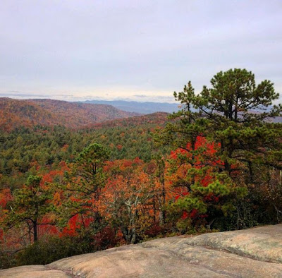 Mountain vista full of fall colors