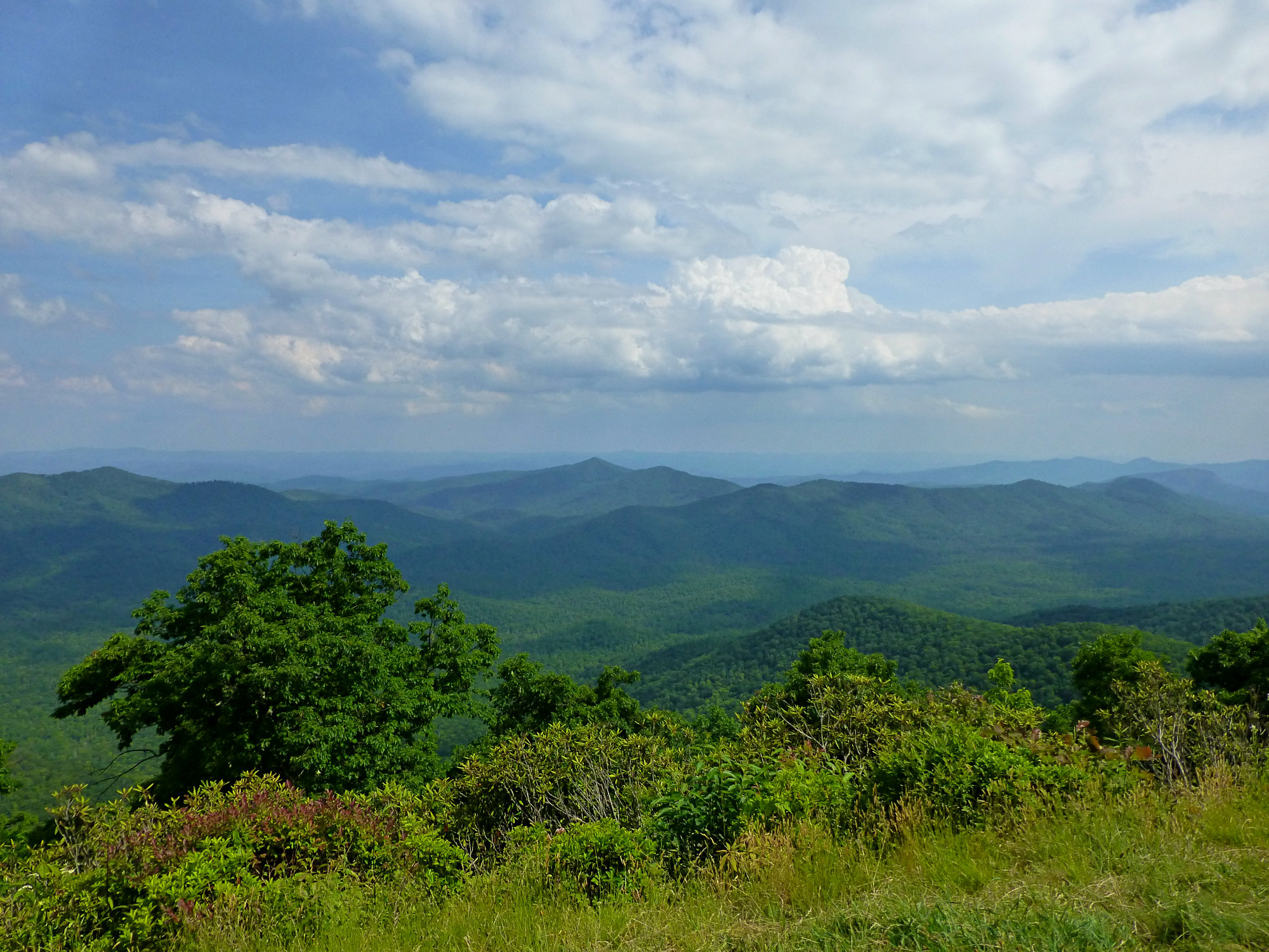 Funnel Overlook Blue Ridge Parkway June 2016