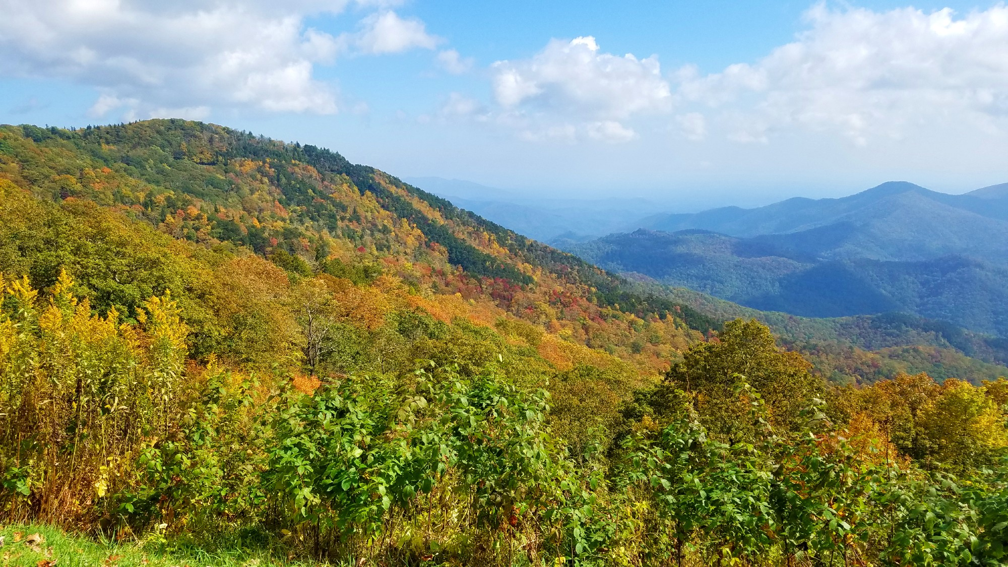 Mountain vista showing several peaks and with fall colors on the trees