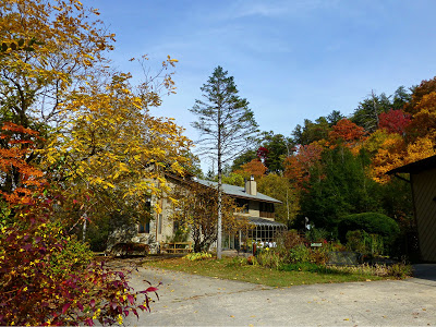Lodge style bed and breakfast in the woods surrounded by beautiful fall foliage