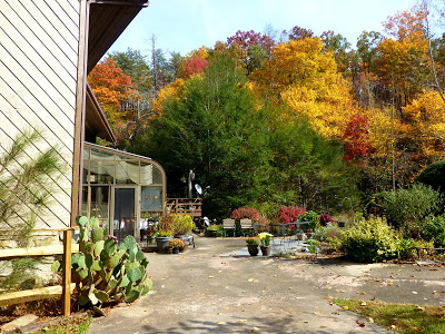 Side view of a solarium and large garden patio area with fall colors behind it