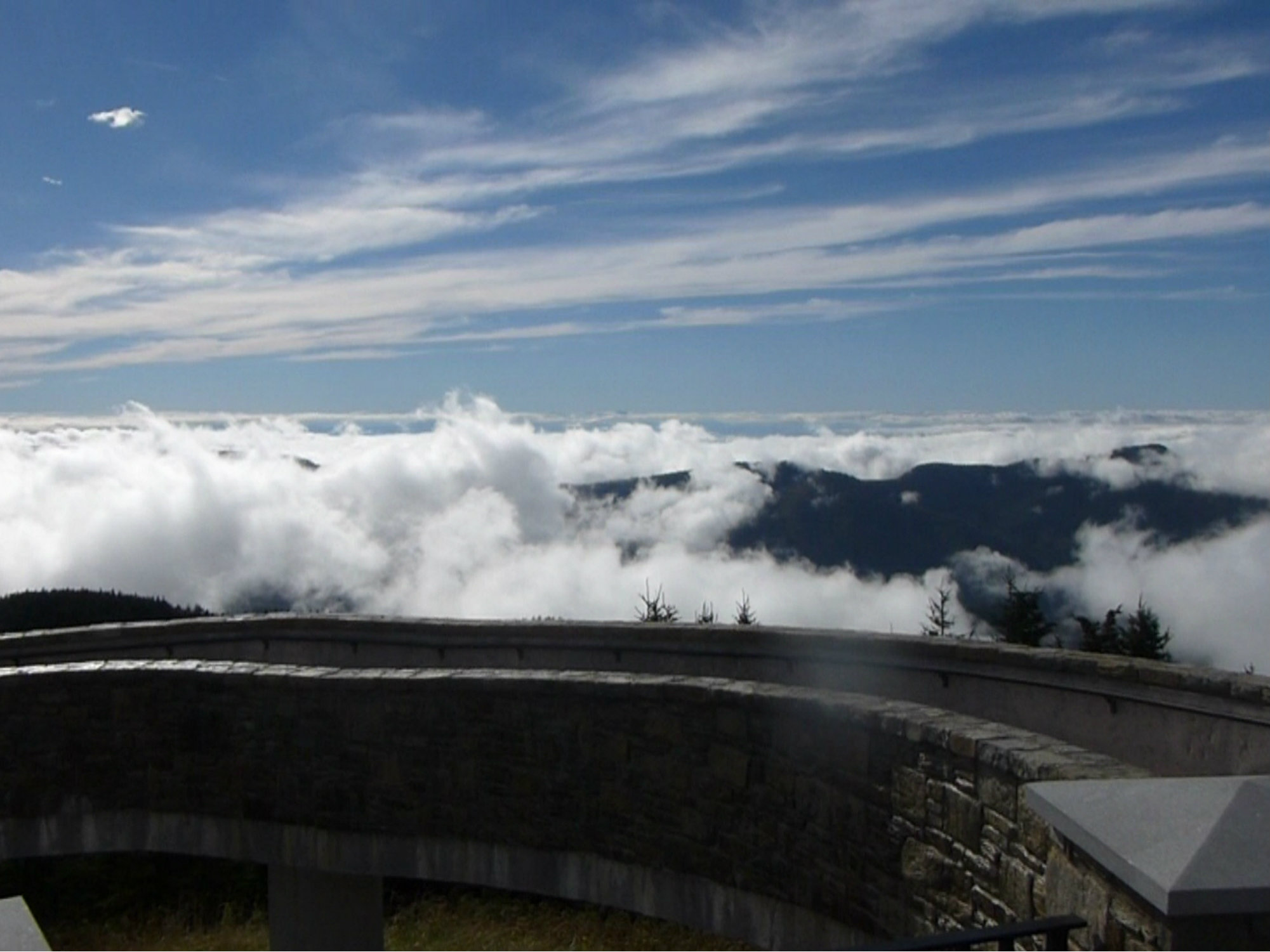 Mt Mitchell Cloudy View