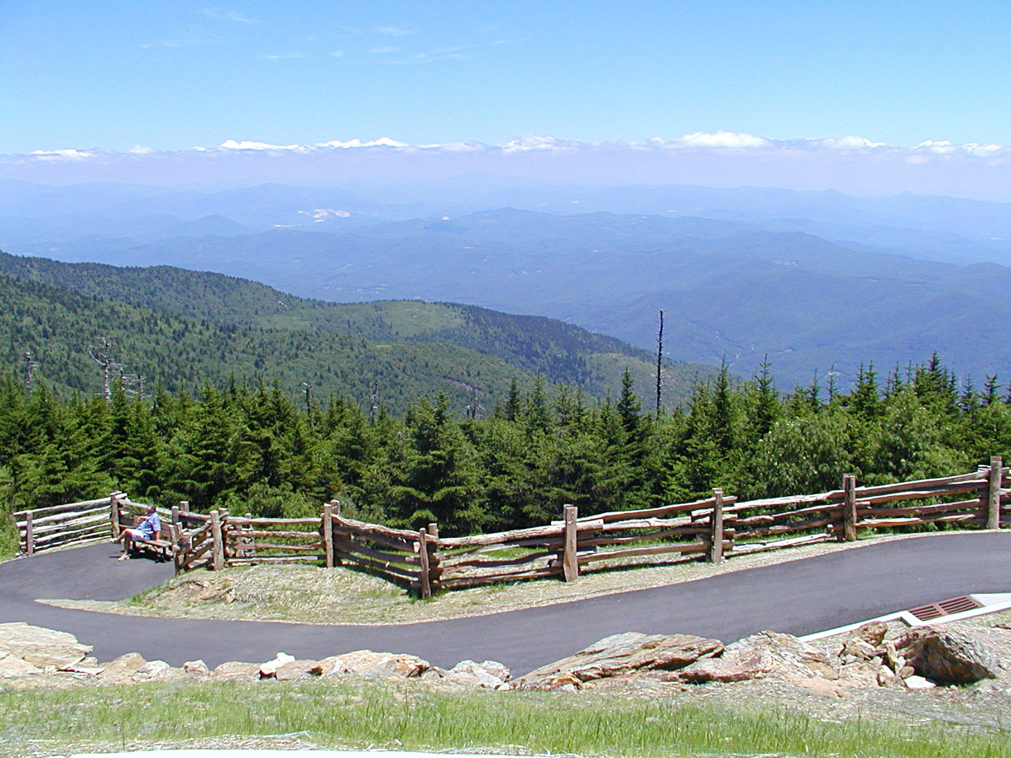 Mt Mitchell Observation Walkway