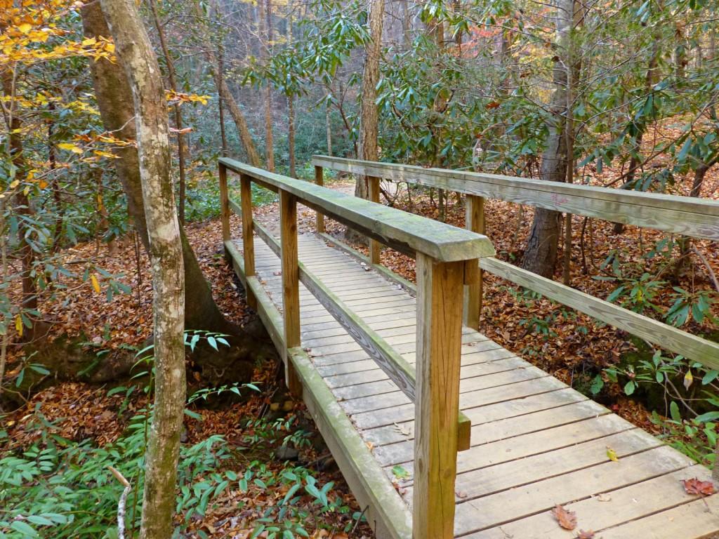 Wooden bridge over a creek in the woods