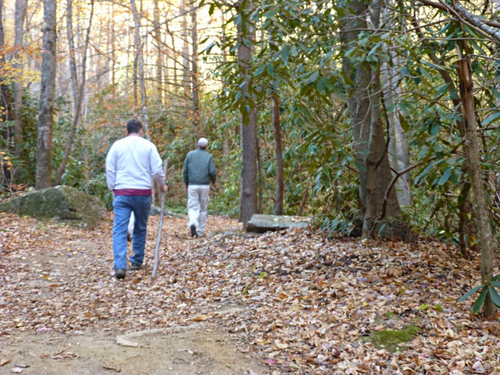 Two men hiking on a leaf covered trail through the woods