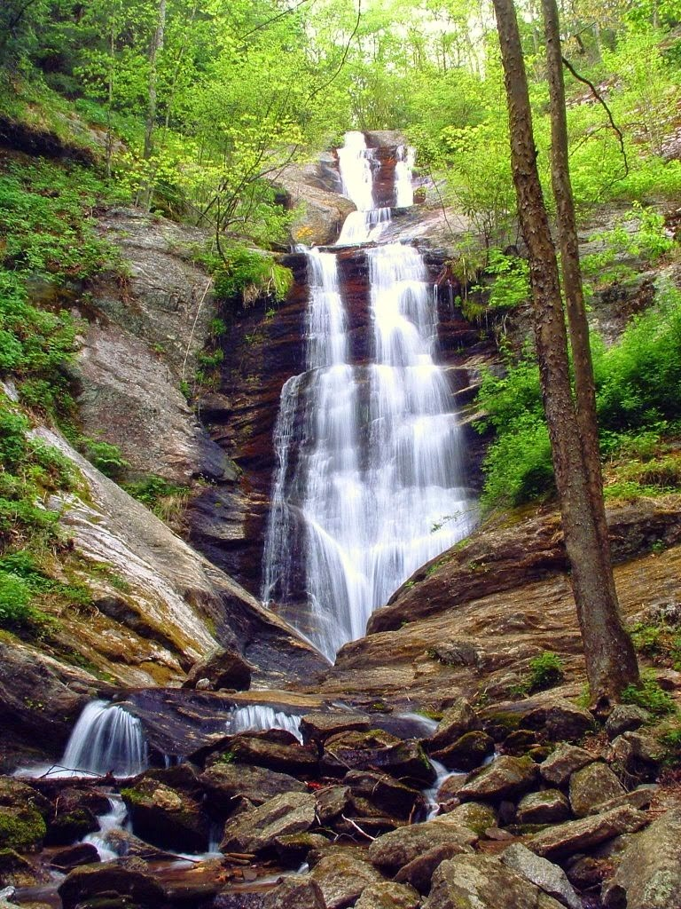 Leafy tree branches surrounding a waterfall with several segments cascading down rocks