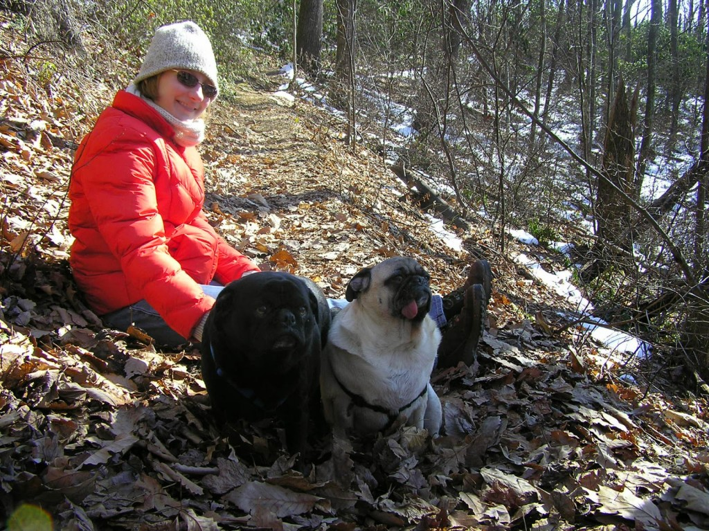 Black dog and white dog sitting on a leaf covered hiking trail with a woman in an orange winter coat