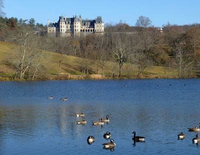Large pond with ducks and geese with French chateau style mansion on a hill in the background