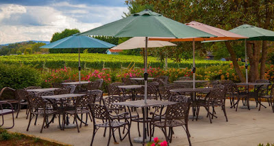 Several sets of black patio furniture with multi-colored umbrellas at a vineyard