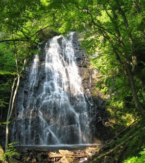 Waterfall spanning wide rocks with a tree canopy in the foreground