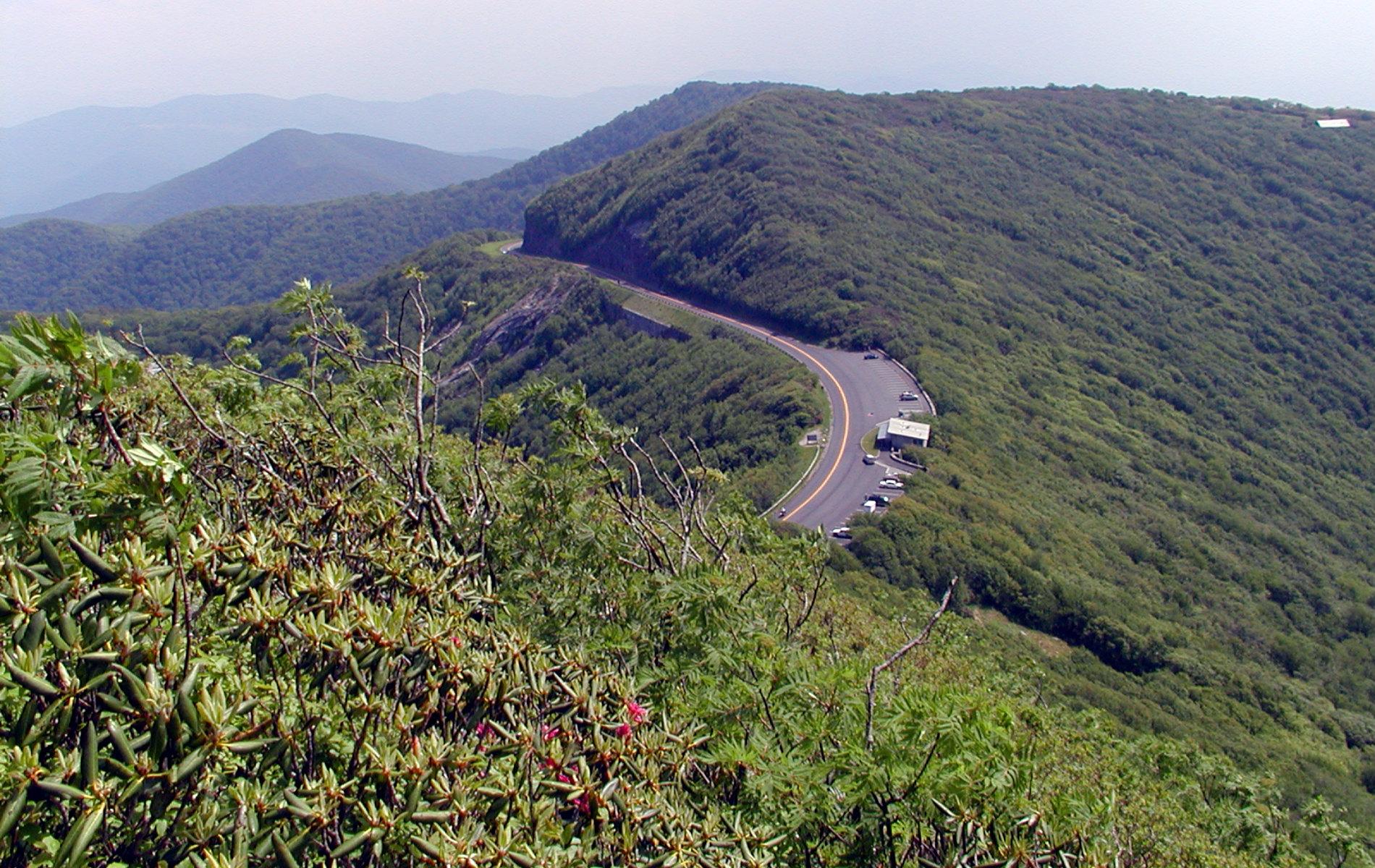 Road curving through tree-filled mountain ridges