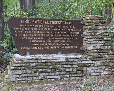 Large sign in the woods describing first tract of National Forest land purchased in 1911