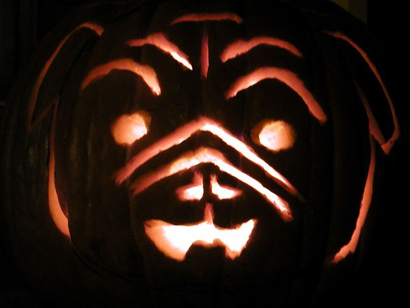 pumpkin carved to look like a pug dog's face